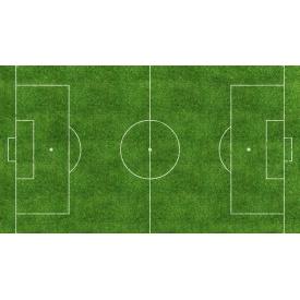 Устройство поля для игры в футбол из искусственной травы