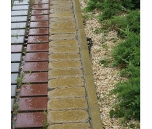 Поребрик Золотой Мандарин 500х200х60 мм на сером цементе горчичный