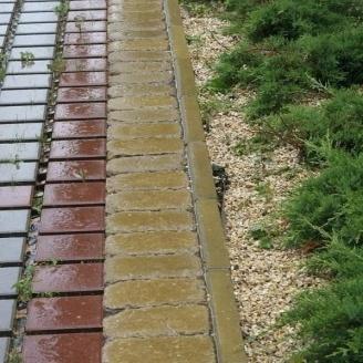 Поребрик Золотой Мандарин 1000х200х80 мм на сером цементе горчичный