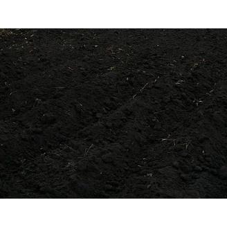 Чорнозем багатий гумусом навалом чорний