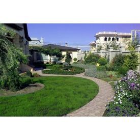 Озеленение территории дома
