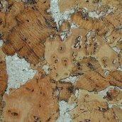 Настінний корок Wicanders Dekwall Roots Hawai Beige 600х300х3 мм