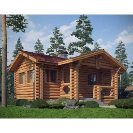 Будівництво будинку з оцилиндрованного колоди 5х10 м