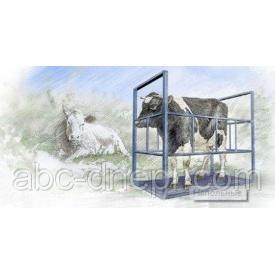 Весы для коров и бычков 1,25х2 м