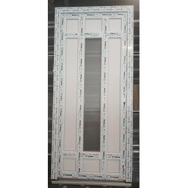 Двері металопластикові WDS вхідні 900х2000 мм