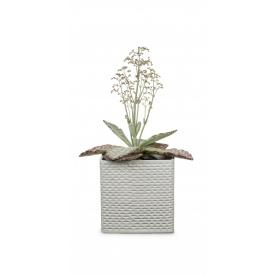 Кашпо для цветов Scheurich Modern керамика 18 дюймов белый куб (62758)
