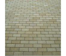 Тротуарна плитка Золотий Мандарин Цегла стандартна 200х100х60 мм на сірому цементі гірчичний