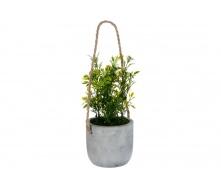Штучні квіти ATMOSPHERA у бетонній підвісній горщику 10 см (145046-1)
