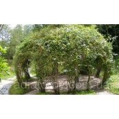 Садова альтанка з композитної арматури Polyarm