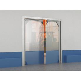 Плівкові маятникові двері DoorHan SSD