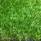 Штучна трава Betap Escada 28 мм