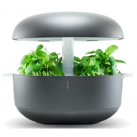 Розумний домашній сад Plantui 6 Smart Garden сірий (SG6-G)