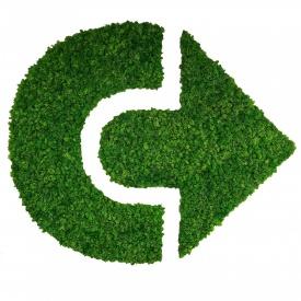 Стабілізований мох SO Green Логотип 1м2 (005)