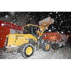 Прибирання і вивезення снігу з приватних територій