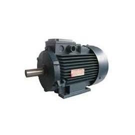 Асинхронний двигун з короткозамкнутим ротором 80В2 2,2 кВт