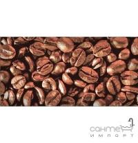 Плитка керамічна декор Absolut Keramika Coffe Beans 03 10х20 (зерна кави)