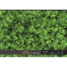 HPL-панель Royale Touche HD7030HG/HD7030 2440х1220х3 мм