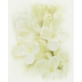 Декор CERSANIT ANDREA FLOWER 2 400x500