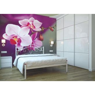 Ліжко металеве Діана 140 Метал дизайн