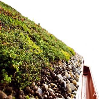 Накопичувальний мат EXTENSIVE SLOPE для похилої зеленої покрівлі