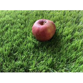 Искусственная трава Jakarta 40 мм декоративная