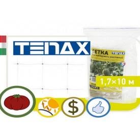 Сетка для поддержки растений TENAX зеленая