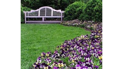 Акценти в саду, декоративні елементи в саду