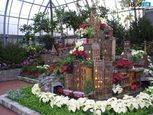 Зимовий сад і оранжерея