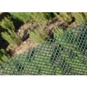 Сетка полимерная Tenax Айри 13x13 мм 1x30 м зеленая