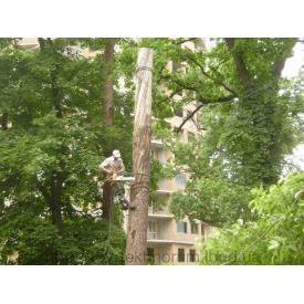 Видалення дерев частинами