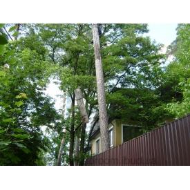 Зрізання аварійних дерев