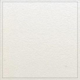 Стельова плита Armstrong Tegular Prima Plain 600*600*15 мм біла