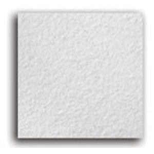 Стельова плита Armstrong Bioguard 600x600x15 мм біла