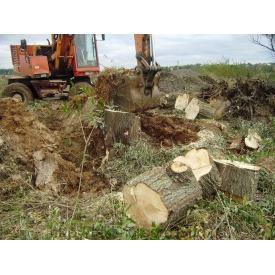Корчевание деревьев