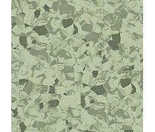 Лінолеум TARKETT PRIMO PLUS Cprpi-311 2*23 м зелений