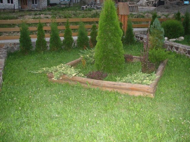 озеленення подвір я фото