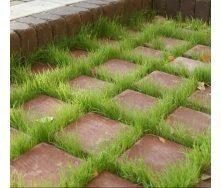 Тротуарна плитка Золотий Мандарин Еко на сірому цементі 200х200х80 мм