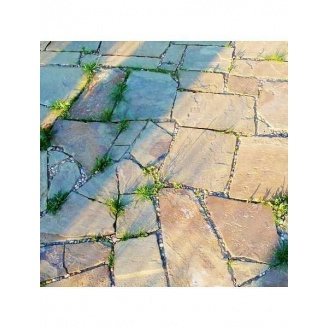 Тротуарный камень ALEX Group Песчаник 5 см желто-коричневый