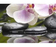 Плитка керамическая BELANI Панно Орхидея 3 35х25 см фисташковый