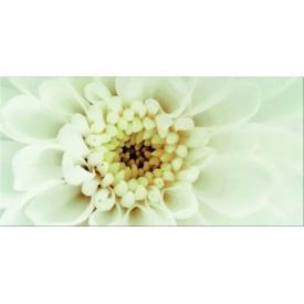 Декор Opoczno Diago inserto flower В 297х600 мм