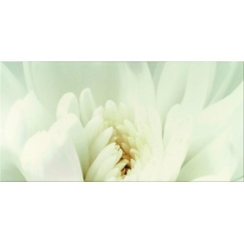 Декор Opoczno Diago inserto flower С 297х600 мм