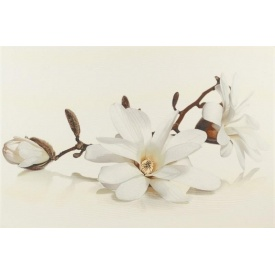 Декор Opoczno Flora magnolia inserto 300х450 мм