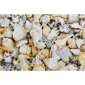 Декор Opoczno Nizza shells inserto A 300х450 мм