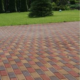 Тротуарна плитка Золотий Мандарин Цегла вузька 210х70х60 мм на сірому цементі червоний