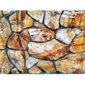 Натуральний камінь Ліпорит Закарпатське дерево