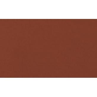 Підлогова плитка Cerrad гладенька 300х148х11 мм rot