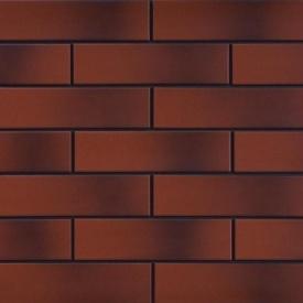 Фасадна плитка Cerrad гладка 245х65х6,5 мм rot cieniowany