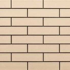 Фасадна плитка Cerrad гладка 245х65х6,5 мм krem