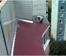 Ремонт крыш и балконов