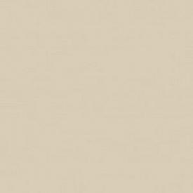 Глянцевая пленка ПВХ для МДФ фасадов светло серая
